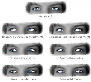 qué nos muestran las miradas